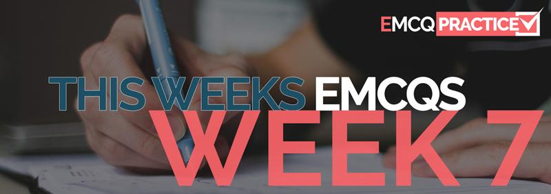 week7